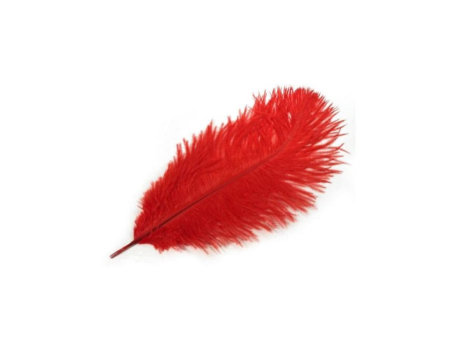 strusie pióra 20-25 cm czerwone