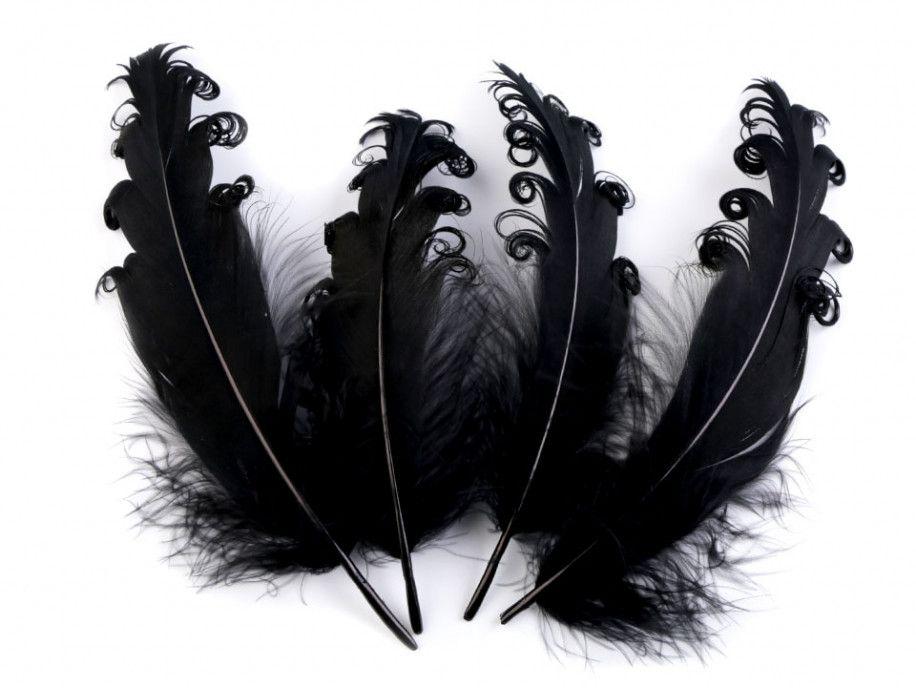 pióra gęsie kręcone 15-18 cm czarne