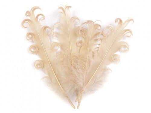 pióra gęsie kręcone 15-18 cm beżowe