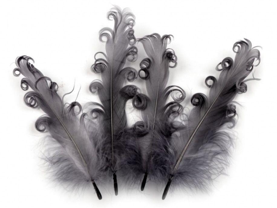 pióra gęsie kręcone 15-18 cm stalowe