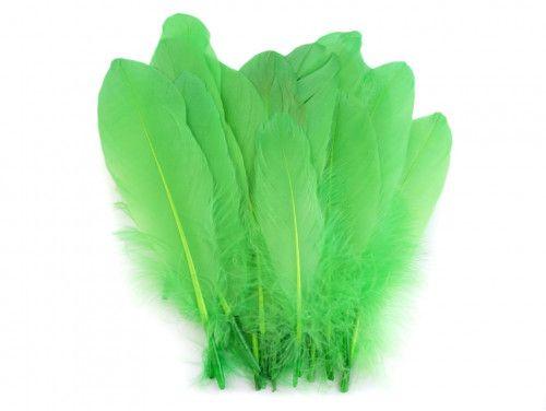 pióra gęsie 15-21 cm zielone