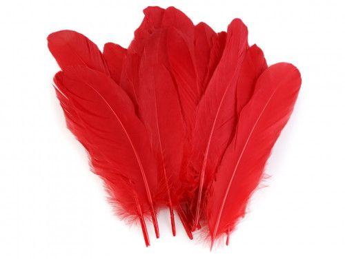 pióra gęsie 15-21 cm. czerwone
