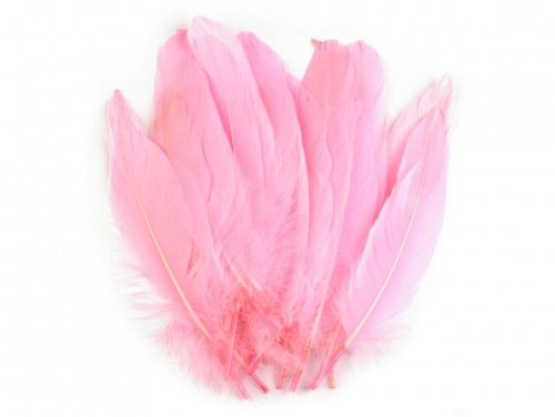 pióra gęsie 15-21 cm. różowe