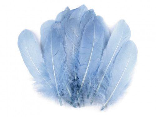 pióra gęsie 15-21 cm. niebieskie
