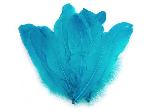 pióra gęsie 15-21 cm. turkusowe
