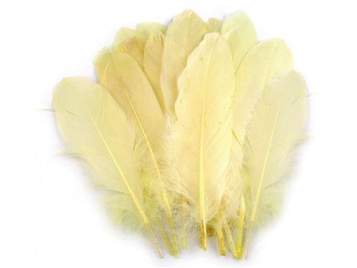 pióra gęsie 15-21 cm. jasne żółte-kremowe