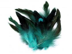 pióra kurze 6-15 cm. opak. 20 sztuk turkusowe