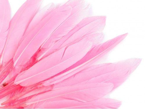 pióra kacze 9-14 cm opak.20 sztuk różowe