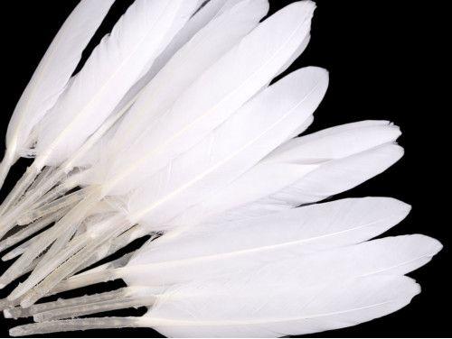 pióra kacze 9-14 cm opak.20 sztuk białe