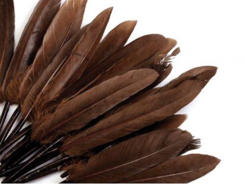 pióra kacze 9-14 cm opak.20 sztuk brązowe