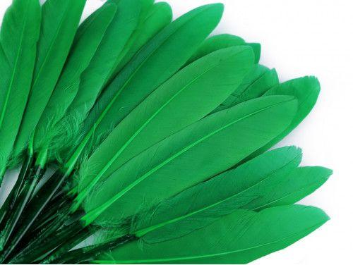 pióra kacze 9-14 cm opak.20 sztuk zielone