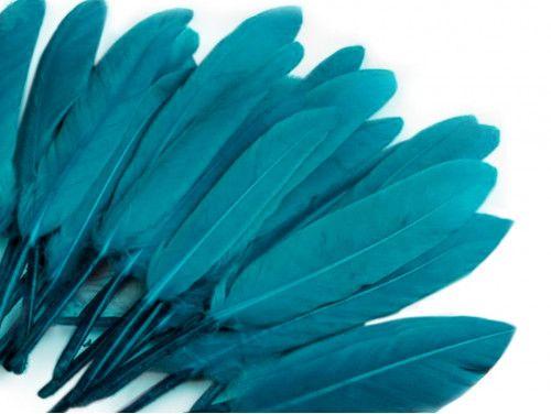 pióra kacze 9-14 cm opak.20 sztuk turkusowe