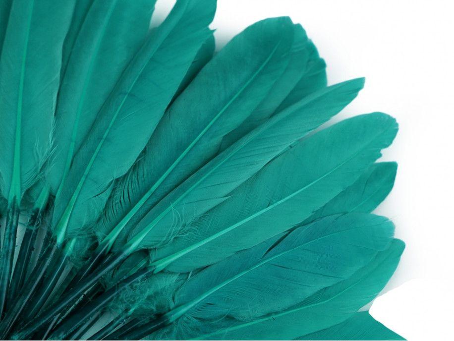 pióra kacze 9-14 cm opak.20 sztuk szmaragdowe