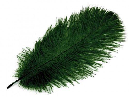 strusie pióro 20-25 cm zielone ciemne