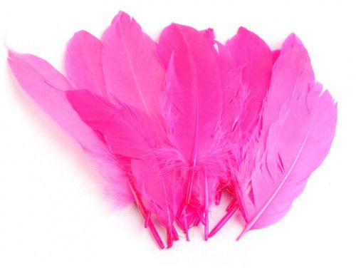 pióra gęsie 15-21 cm. różowe neonowe
