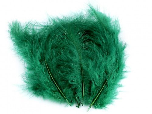 strusie pióra 9-16 cm zielone ciemne