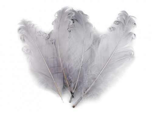 pióra gęsie kręcone 15-18 cm szare