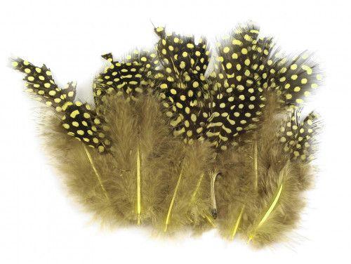 pióra perliczki 8-13cm.20 sztuk żółte