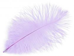 strusie pióro 20-25 cm liliowe