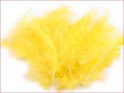 strusie pióra 12-17 cm żółte