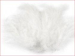 strusie pióra 9-16 cm białe