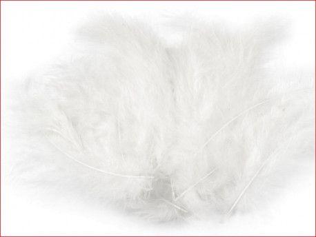 strusie pióra 12-17 cm białe
