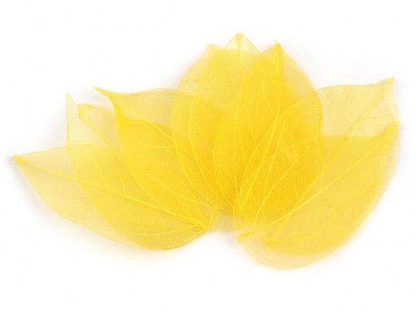 liście do dekoracji żółte