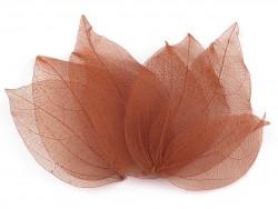 liście do dekoracji brązowe