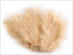 strusie pióra 9-16 cm beżowe