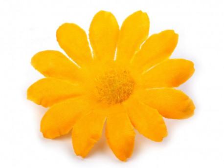 kwiat margaretka żółta
