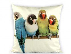 poszewka na poduszkę papugi