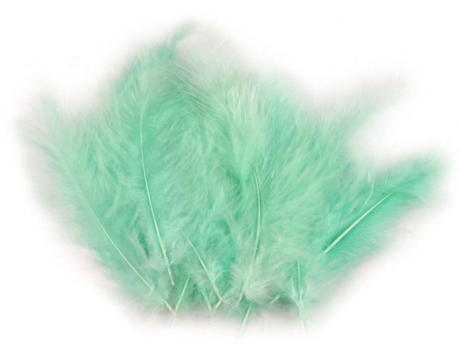 strusie pióra 9-16 cm miętowe